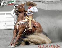20100514015009-249506-suertes-charras-1.jpg.jpg