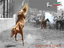 20100514015200-249509-suertes-charras-2.jpg.jpg