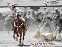 20100514015451-249510-suertes-charras-3.jpg.jpg