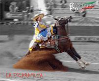 20100514015513-249511-suertes-charras-4.jpg.jpg