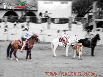 20100514015632-249513-suertes-charras-6.jpg.jpg