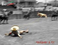 20100514015759-249515-suertes-charras-8.jpg.jpg