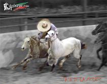 20100514020210-249507-suertes-charras-10.jpg.jpg